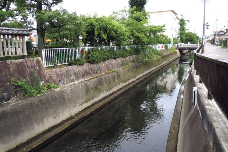 黒田城/⑤川
