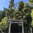 伊勢神宮 と 松阪牛