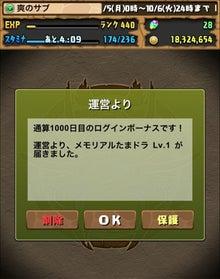 1000日目タマ