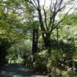 妙見温泉 石原荘