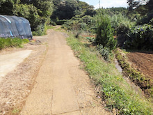 松浦ジョグトリップ 29km