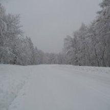 住みたいですか?大雪…