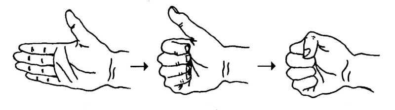 正拳の握り