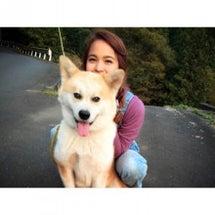日本犬の里♪