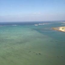 沖縄の旅!三大高級魚…