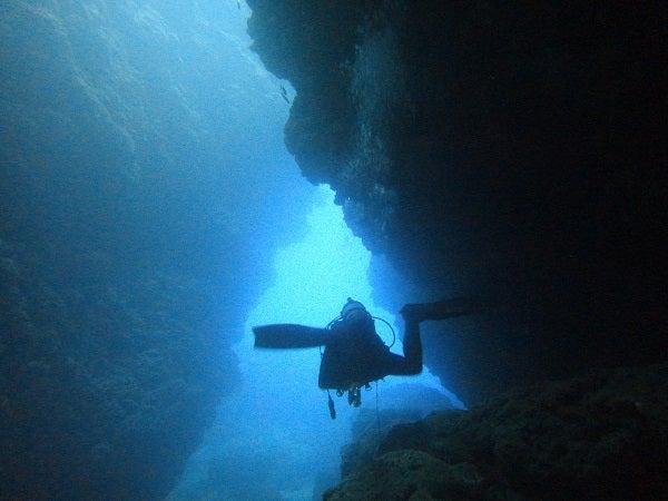 奄美大島ダイビング151031a