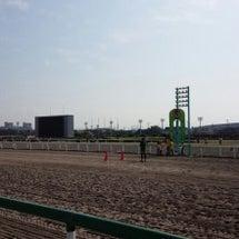 船橋競馬場ダートマラ…