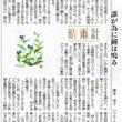 新潟日報 夕刊コラム…