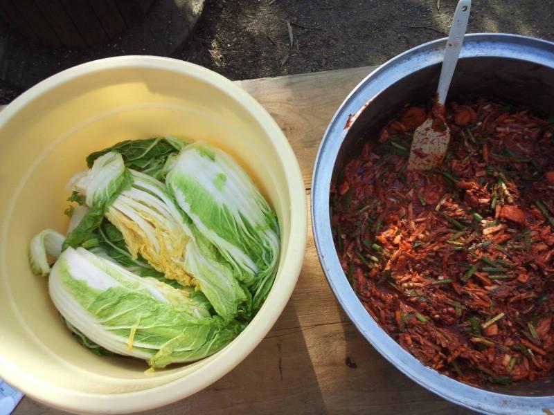 白菜とヤンニョム