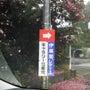 伊藤園レディース