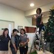 クリスマスツリー  …