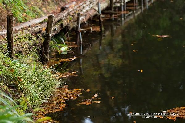 秋の鎌北湖