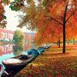 秋。真っ盛り!