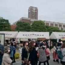 京大11月祭
