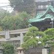 【七五三情報】叶神社…