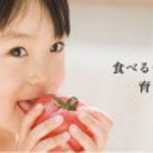 食育について