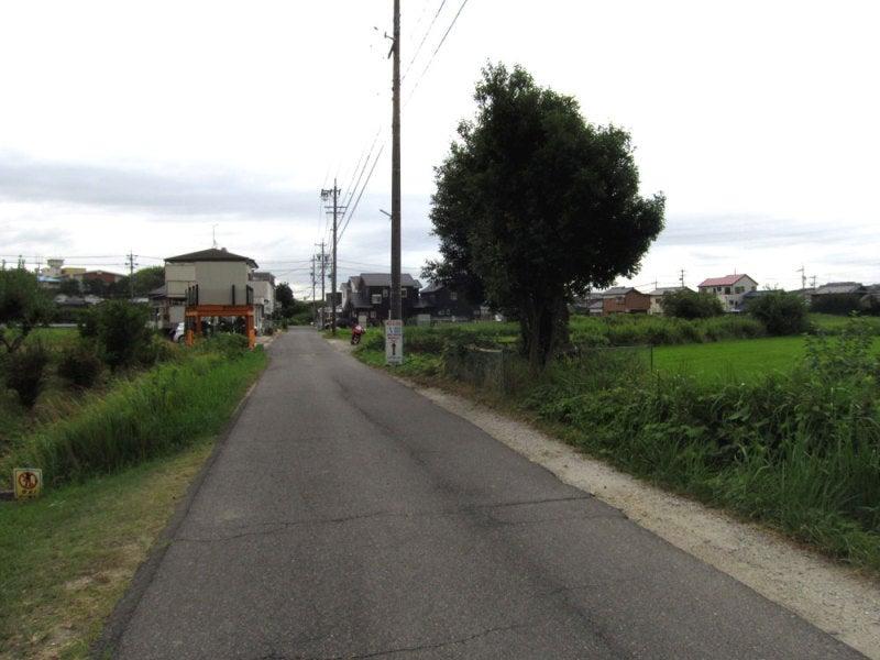 藤島城②西から