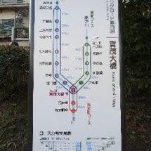 京都ランニング