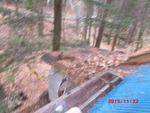 屋根落ち葉掃除 1