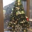 クリスマスツリー出し…