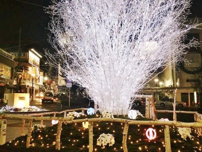 自由が丘クリスマスイルミネーション