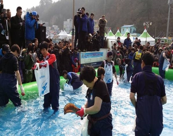 タラ水産物祭り