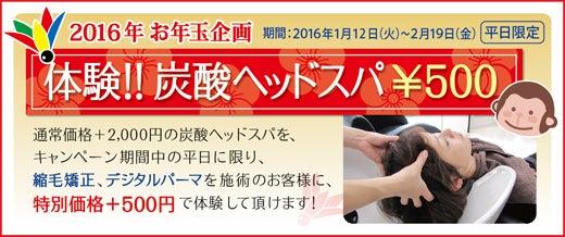 体験!炭酸ヘッドスパ ¥500