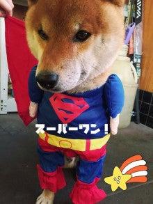 ネタなし(風介6歳)