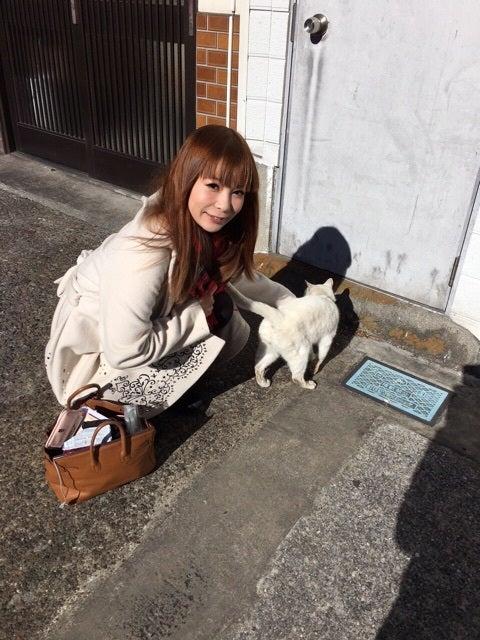【動物虐待】中川翔子はポケモンのイメージダウンに繋がる4 [転載禁止]©2ch.netYouTube動画>3本 ->画像>347枚