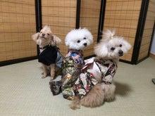 ルナ森田悦子