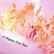 A Happy Ne…