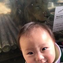 京都市動物園♪
