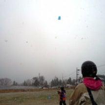 雪が風てきました!