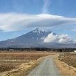 今日の富士山 / 晴…