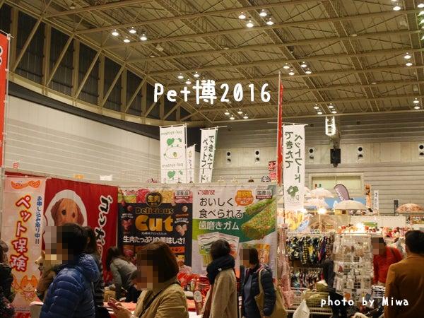 Pet博2016
