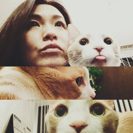 ワタナベ&マイケル