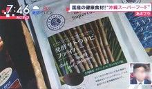 発酵サトウキビファイバー