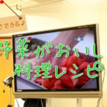 鳥取・北栄町の野菜を…