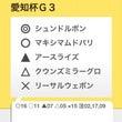 愛知杯G3