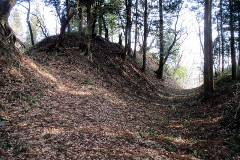 稲荷城④土塁と堀