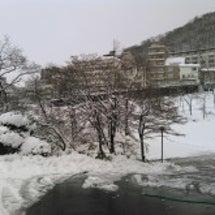 大雪が降りました!