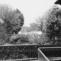 佐賀で雪景色!
