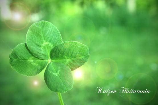 幸せの四つ葉のクローバーはあなたの中にある