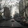 上海二日目