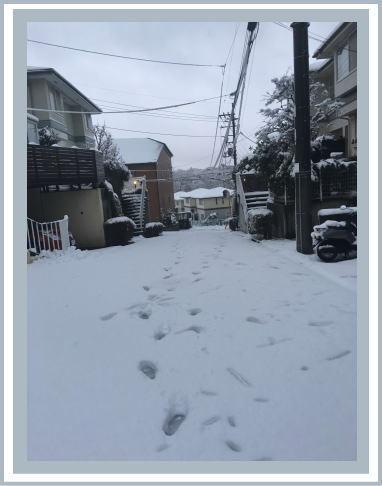 雪2016.1.18