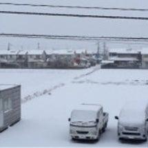 40年ぶり?の大雪。…