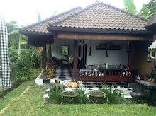 organic cafe2
