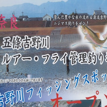 奈良県 吉野川 ニジ…