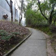 比治山公園、お散歩