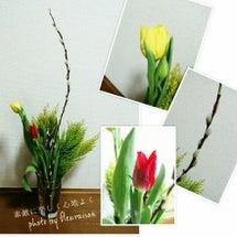 ■今日は、立春。昨日…